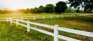 """Há uma visão paradoxal entre """"direito de propriedade"""" e """"intervenção do Estado""""?"""